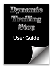 Dynamic Trailing Stop (DTS) MTF User Guide